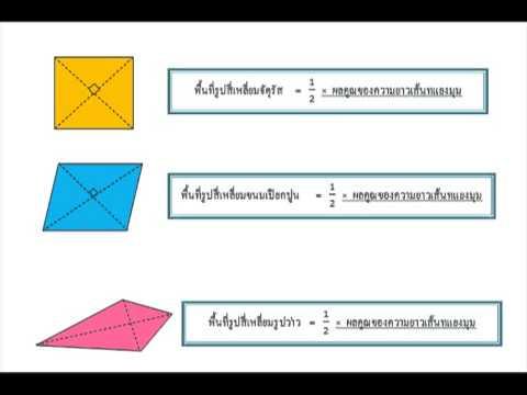 การหาพื้นที่รูปสี่เหลี่ยมที่มีเส้นทแยงมุมตัดกันเป็นมุมฉาก 2