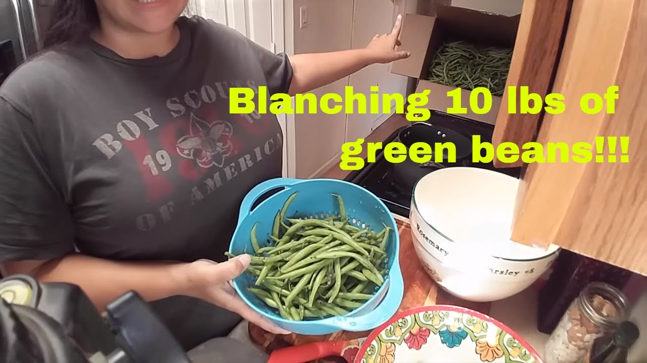 Prepping 10 POUNDS of green beans to freeze - By blanching