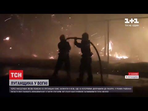 Масштабні пожежі у