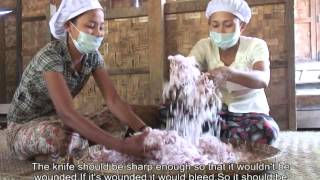 A Gateway to Development: The Business of Dehydrated Onions