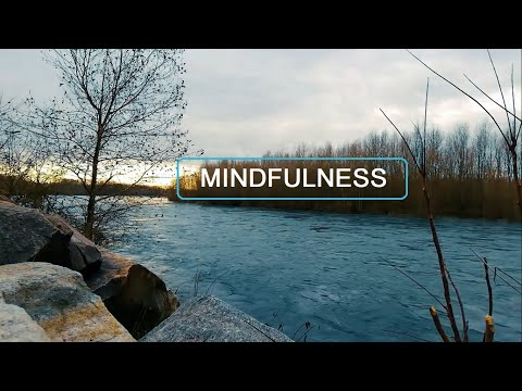 10 Minutes Meditation To Clear Mind, Focus, Clear Negative, Mindfulness & Heartfulness.