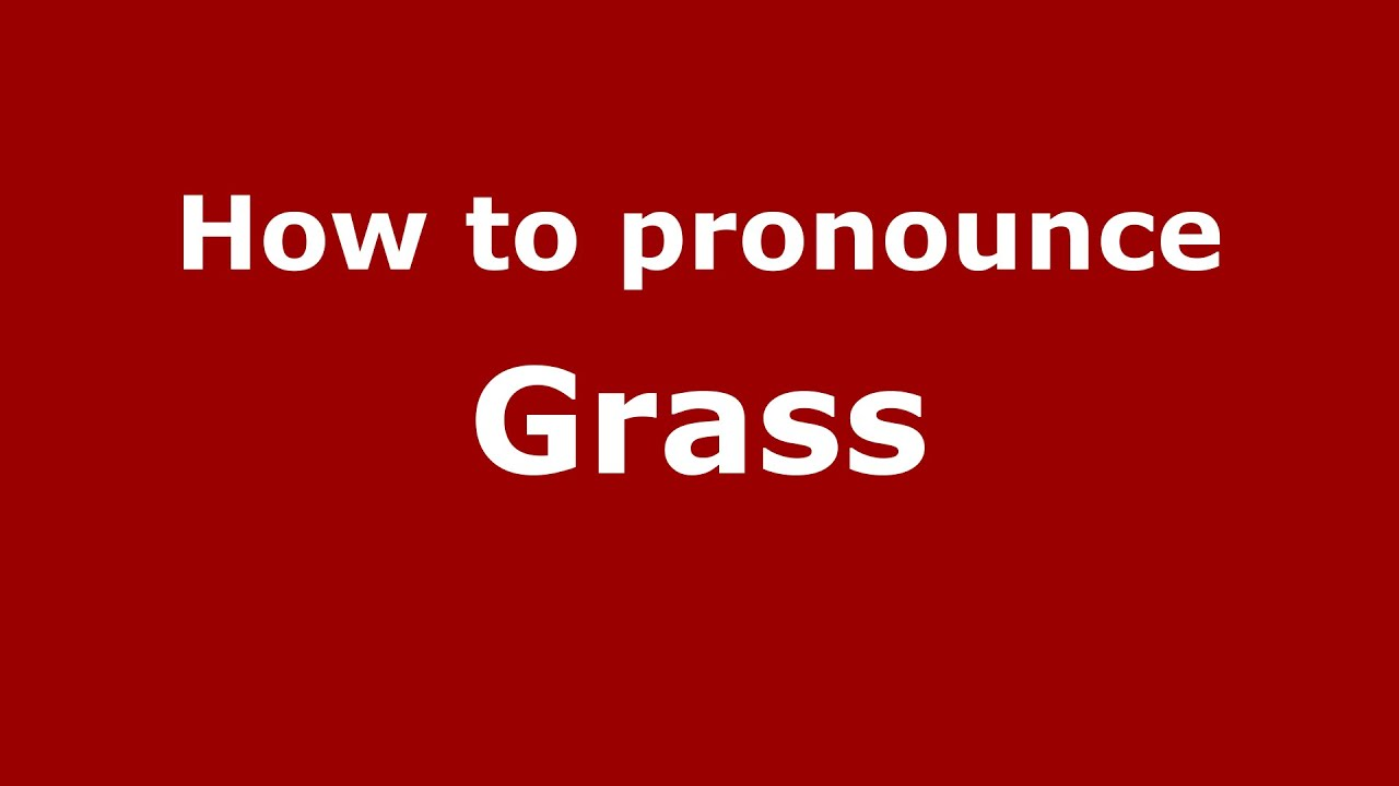 How to pronounce Grass (Germany/German) - PronounceNames.com