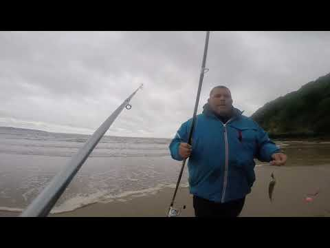 Flounder And Small Bass Fishing Pembrokeshire West Wales