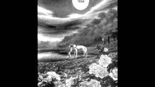 MMV]волчий дождь песни кошка Сашка(волчье солнце)(белая волчица) на мангу(wolf's rain)