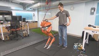 caltech robot