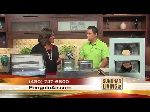 How Good Is Your Home Air Quality? Get It Tested