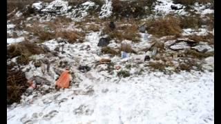 МЫ ВЫБИРАЕМ ЖИЗНЬ. Защита экологии.avi(Фильм делался на конкурс видеороликов и занял значимое место! Хотелось бы привлечь людей, призвать к защите..., 2013-01-29T16:58:03.000Z)