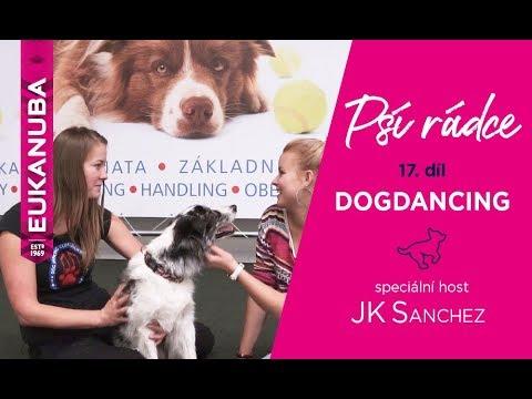 PSÍ RÁDCE - 17. díl, DOGDANCING / speciální host JK Sanchez