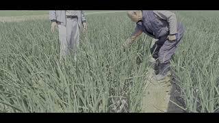 [한국게르마늄 농업방송…