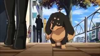 Аниме клип- Мой любимый пёс