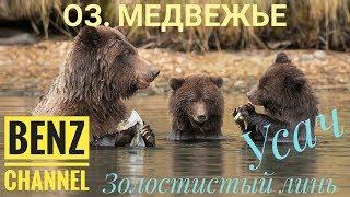 Русская Рыбалка 4 РР4 озеро Медвежье Золотистый Линь и Усач Обыкновенный