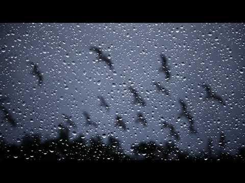 Картинка разные. Дождь, стекло, окно, капли, Rain Drops On Glass, ночь, JPEG