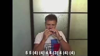 Учимся играть на губной гармошке ( Andre Tay - Я церковные люблю колокола)(, 2016-09-06T09:46:54.000Z)