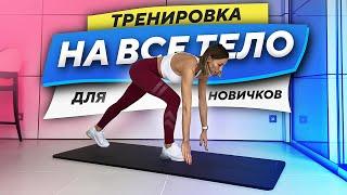 ТРЕНИРОВКА НА ВСЕ ТЕЛО ДЛЯ НАЧИНАЮЩИХ Упражнения На Все Тело в Домашних Условиях