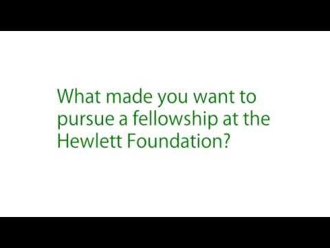 A Q&A With Elisha Smith Arrillaga, Hewlett Foundation Fellow