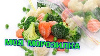 МОЯ МОРОЗИЛКА часть 2 /Что мы замораживаем из овощей и фруктов