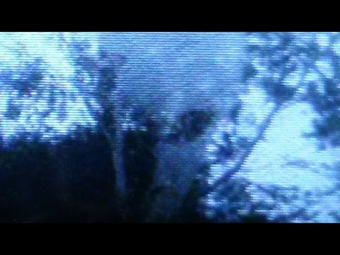 SCARY!!! Alien Grey Encounter! Caught ON Cell Phone!!!? UFO Sightings