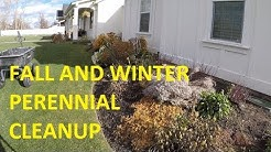 How to clean up PERENNIALS in the fall