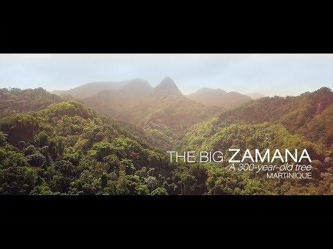 THE BIG ZAMANA