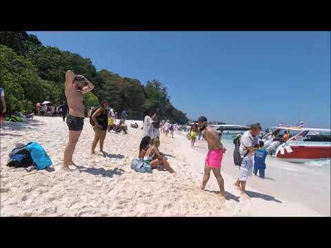 Симиланские острова снорклинг рыбки 07 02 2018 под водой