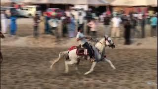 Balotra teliwara horse fair 2019 part 21