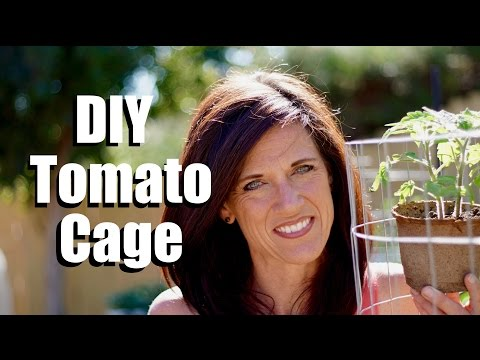 making-a-diy-tomato-cage---sturdy,-easy-and-cheap-//-$10-garden-series-#5,-season-2