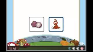 Rosetta Stone® Reading for Homeschool Pre-K Activity: Matching Pictures