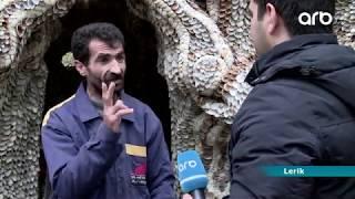 Lerik sakini balıqqulaqlarından möhtəşəm mənzərələr yaradır