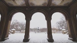 The New York City Blizzard in 166 Beautiful Shots