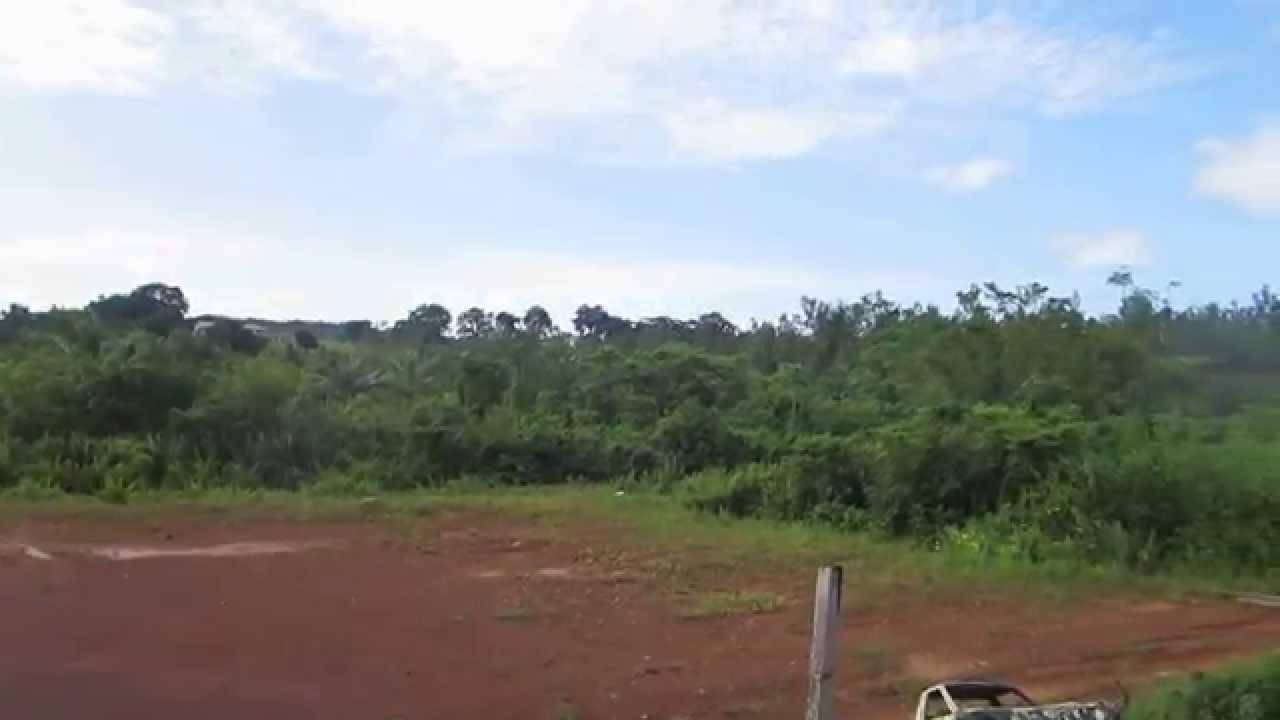 Kumaka Guyana