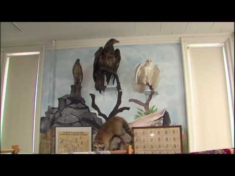 Illinois Stories   Watseka Old Courthouse   WSEC-TV/PBS Watseka