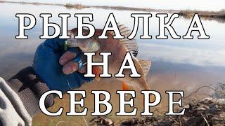 Рыбалка на Севере, Нижневартовск(Находясь в Командировке в г. Нижневартовск в 2015 году иска водоем для ловли на спиннинг, вроде и водоемов..., 2017-01-08T11:04:20.000Z)