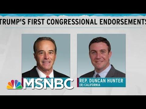 First Trump Endorsements In Congress Indicted, Plead Guilty | Rachel Maddow | MSNBC