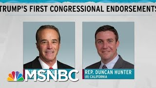 First Trump Endorsements In Congress Indicted, Plead Guilty | Rachel Maddow | MSNBC