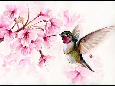 Watercolor Hummingbird And Cherry Blossom Ii Painting