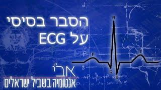"""סרטון הסבר בסיסי על אק""""ג/ECG/EKG"""