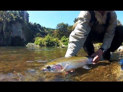 Fly Fishing New Zealand - Sight Fishing The Tauranga-Taupo River