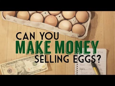 Can you make money selling eggs from your small farm for What can i make and sell