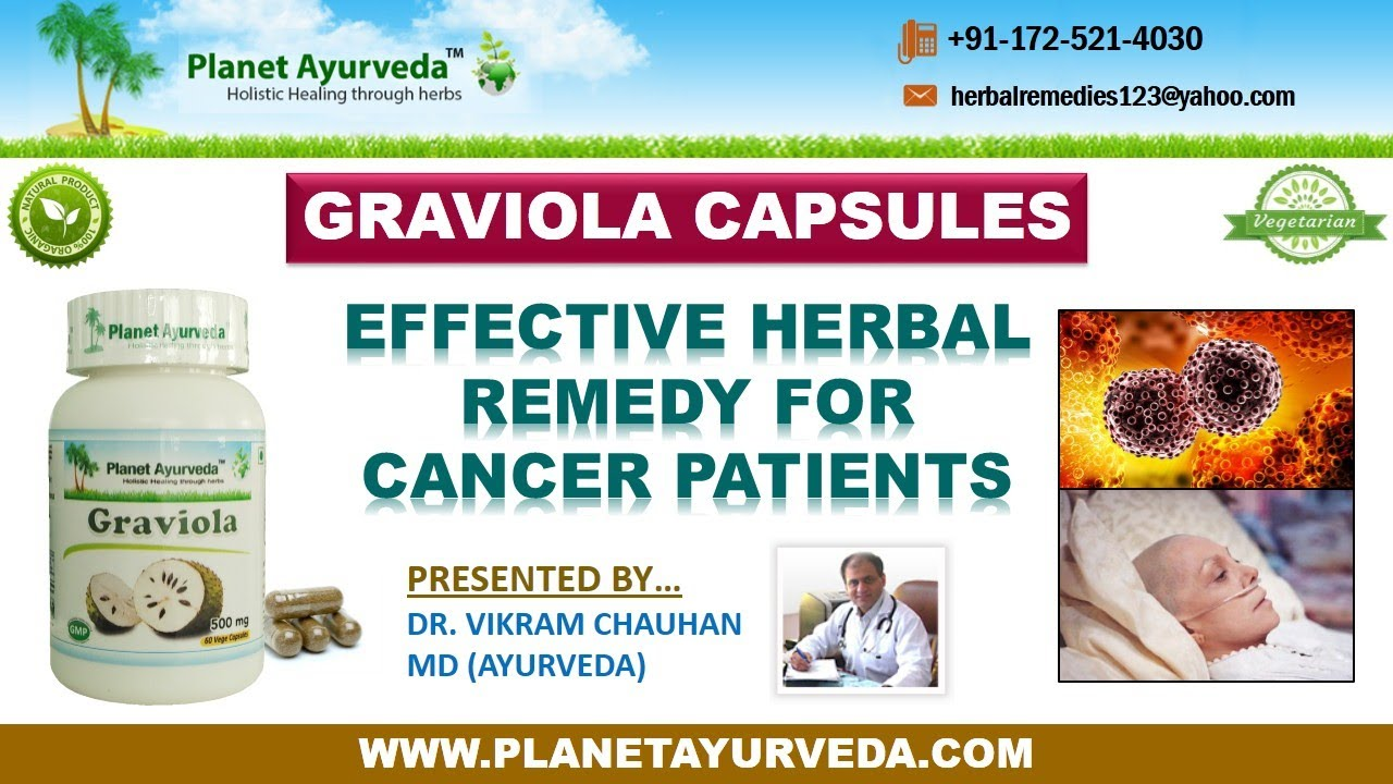 Cancer herbal treatment statistics - Graviola Capsules Soursop Effective Herbal Remedy For Cancer Patients