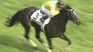 【競馬】【ウオッカ】歴史的牝馬、東京優駿に現る/07年日本ダービー - netkeiba -