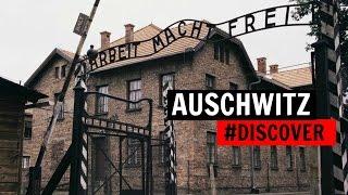 AUSCHWITZ raconté par trois déportés #DISCOVER thumbnail
