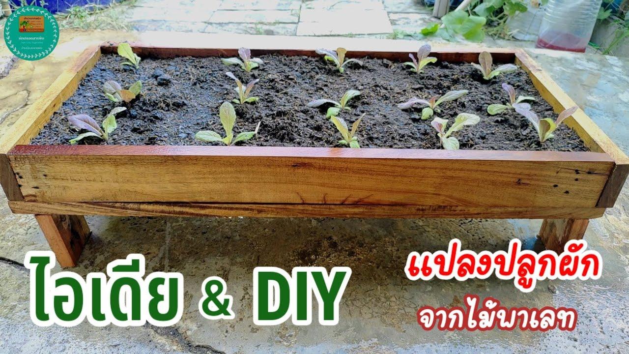 ไอเดีย \u0026 DIY แปลงปลูกผักจากไม้พาเลท สำหรับบ้านพื้นที่น้อย หรือพื้นที่จำกัด