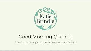 Good Morning Qi Gang! Advice On ME And Chronic Fatigue