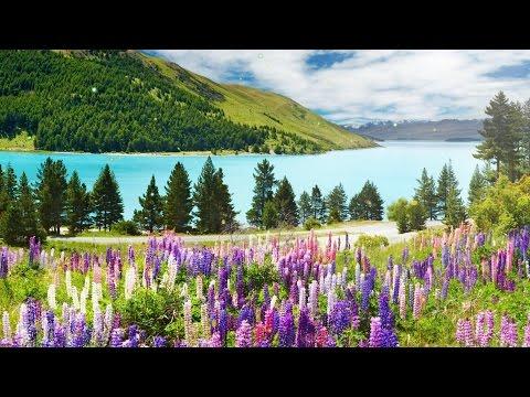 Красота альпийских лугов для Вас!