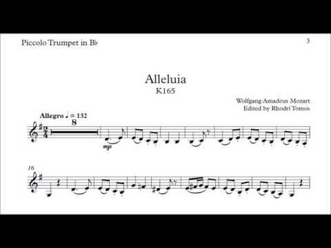 Mozart Alleluia karaoke or instrumental play along with sheet music