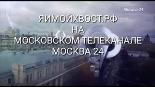 ЯИМОЙХВОСТ.РФ на Московском телеканале МОСКВА 24