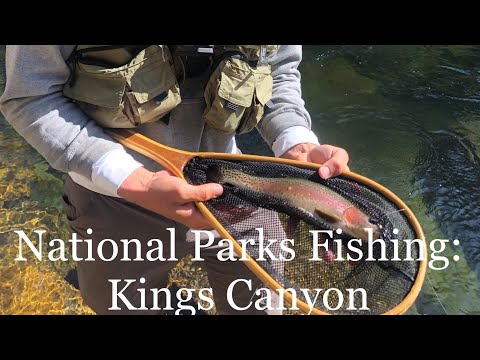 National Parks Fishing- Kings Canyon: South Fork Kings River Fly Fishing