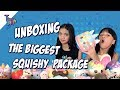 The Baldys - UNBOXING THE BIGGEST SQUISHY PACKAGE | Naura dan Neona