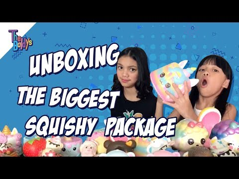 The Baldys - UNBOXING THE BIGGEST SQUISHY PACKAGE | Naura Dan Neona