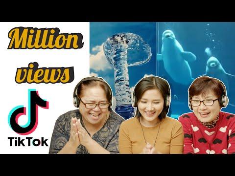 Người lớn tuổi ở Mỹ lần đầu xem TikTok Triệu View   YE'S COMING REACTION